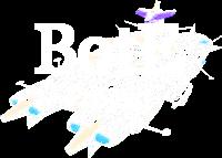 BotE-Projekt.png