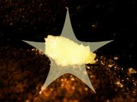 Kristallverteiler(con_8388.bop).jpg