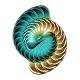 MAJOR6_Symbol_80x80.png