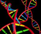 biotech_by_voxelgeek.png